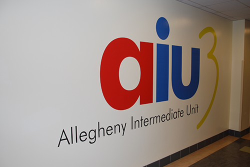 AIU Homelessness Program